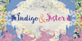 Indigo & Aster